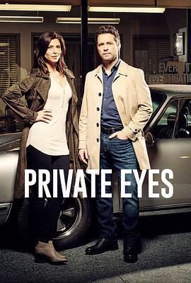 私家侦探第五季
